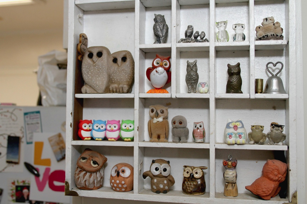 Home Tour: Laura's Colorful Collected Home, Full of Artwork and Owls From Around the World