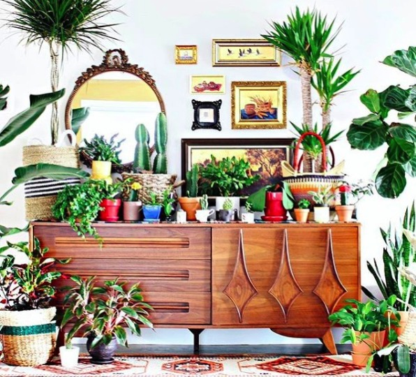 Boho chic plant lover credenza