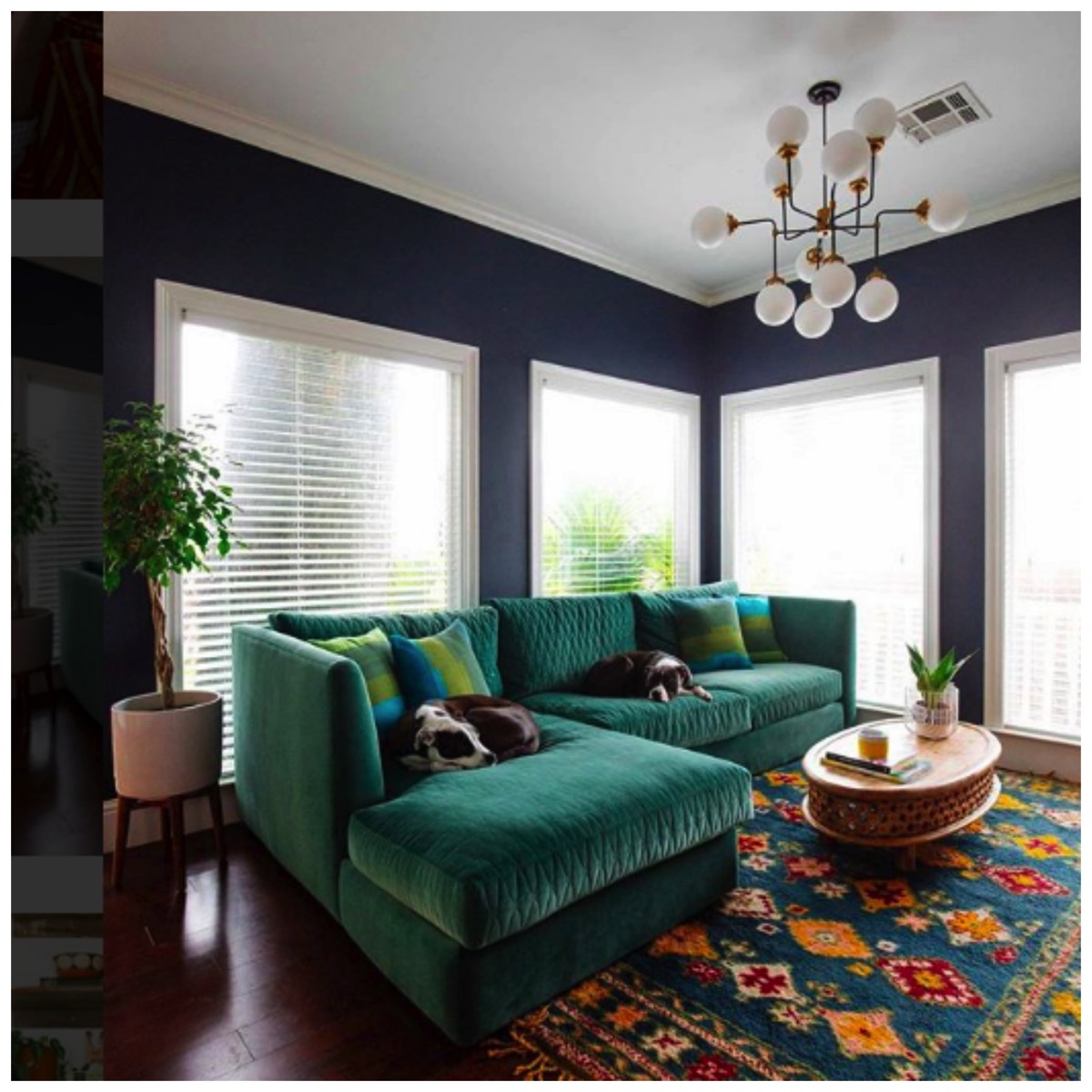 Teal couch of dabito blue and teal livingroom