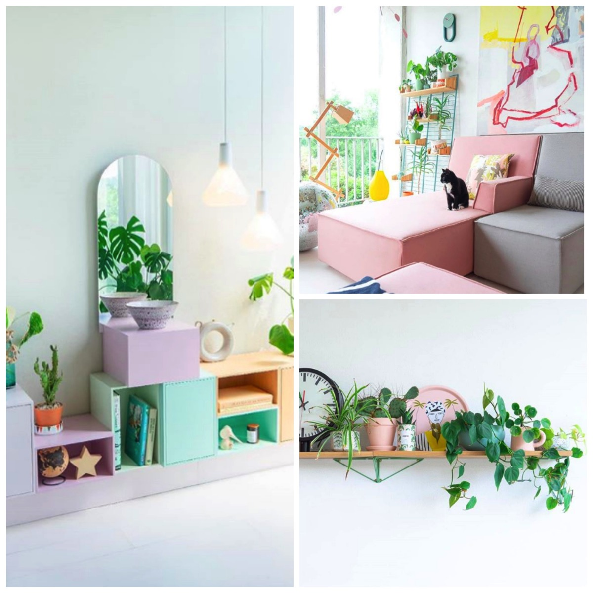 Modern french home decor with plants